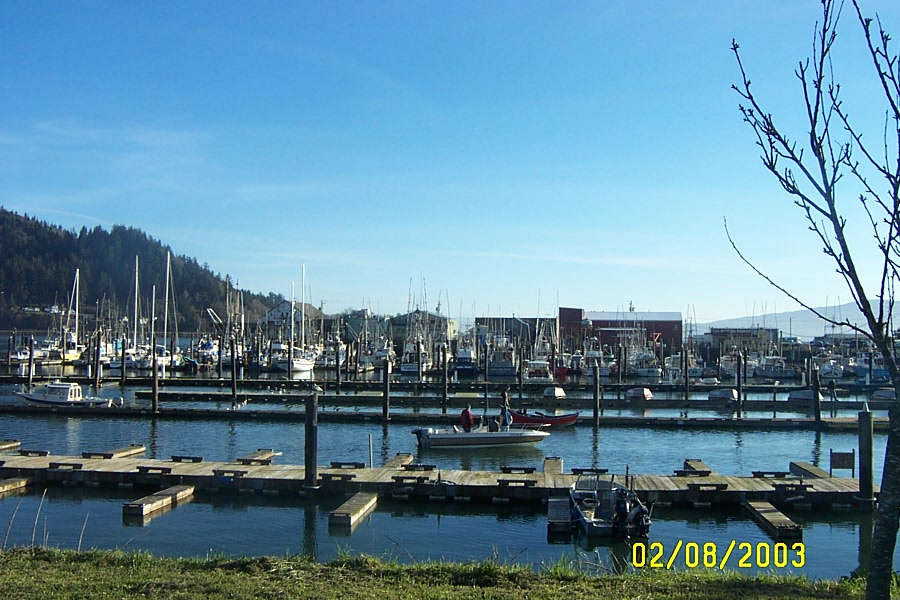 The boat basin and commercial fleet at Garibaldi, Oregon.