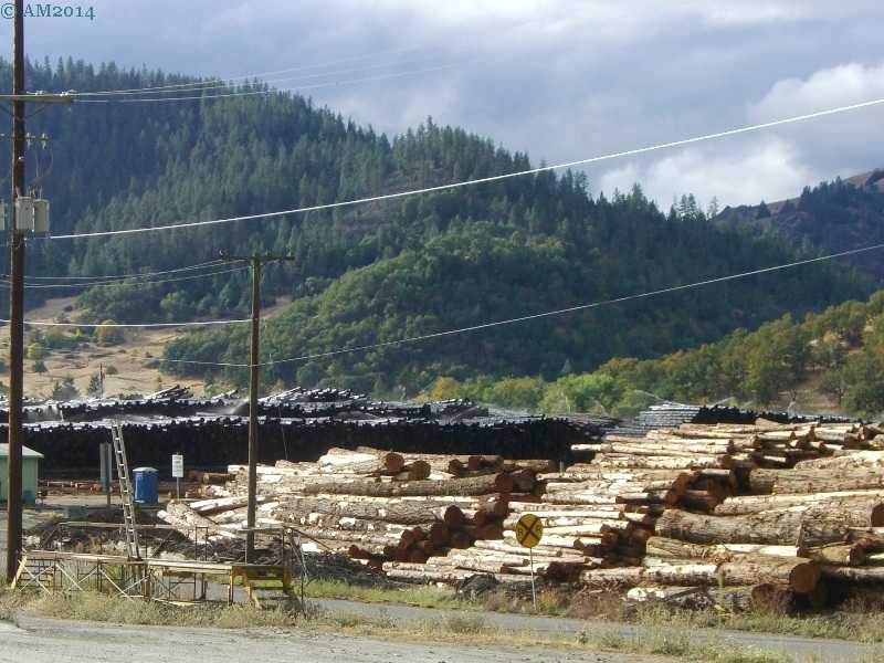 C & D Lumber, Riddle, Oregon.